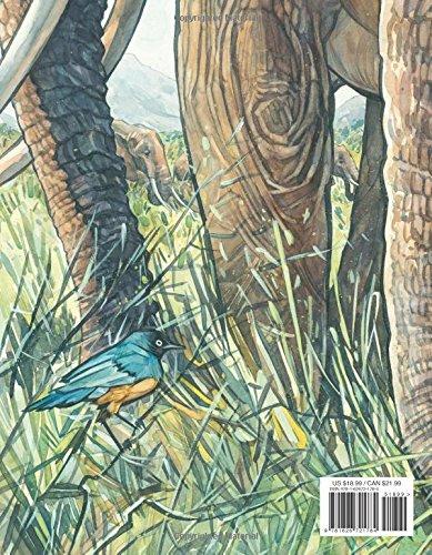 How to Be an Elephant by David Macaulay Studio (Image #1)