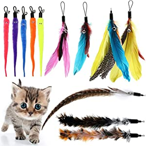 BINGPET Cat Feather Toys Replacement - 12 Pack Cat Interactive Toys for Indoor Cats, Multi Teaser Toys Refills with Bells for Cat Wands, Assorted Feathers and Soft Furry Tail