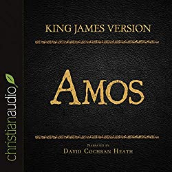 Holy Bible in Audio - King James Version: Amos
