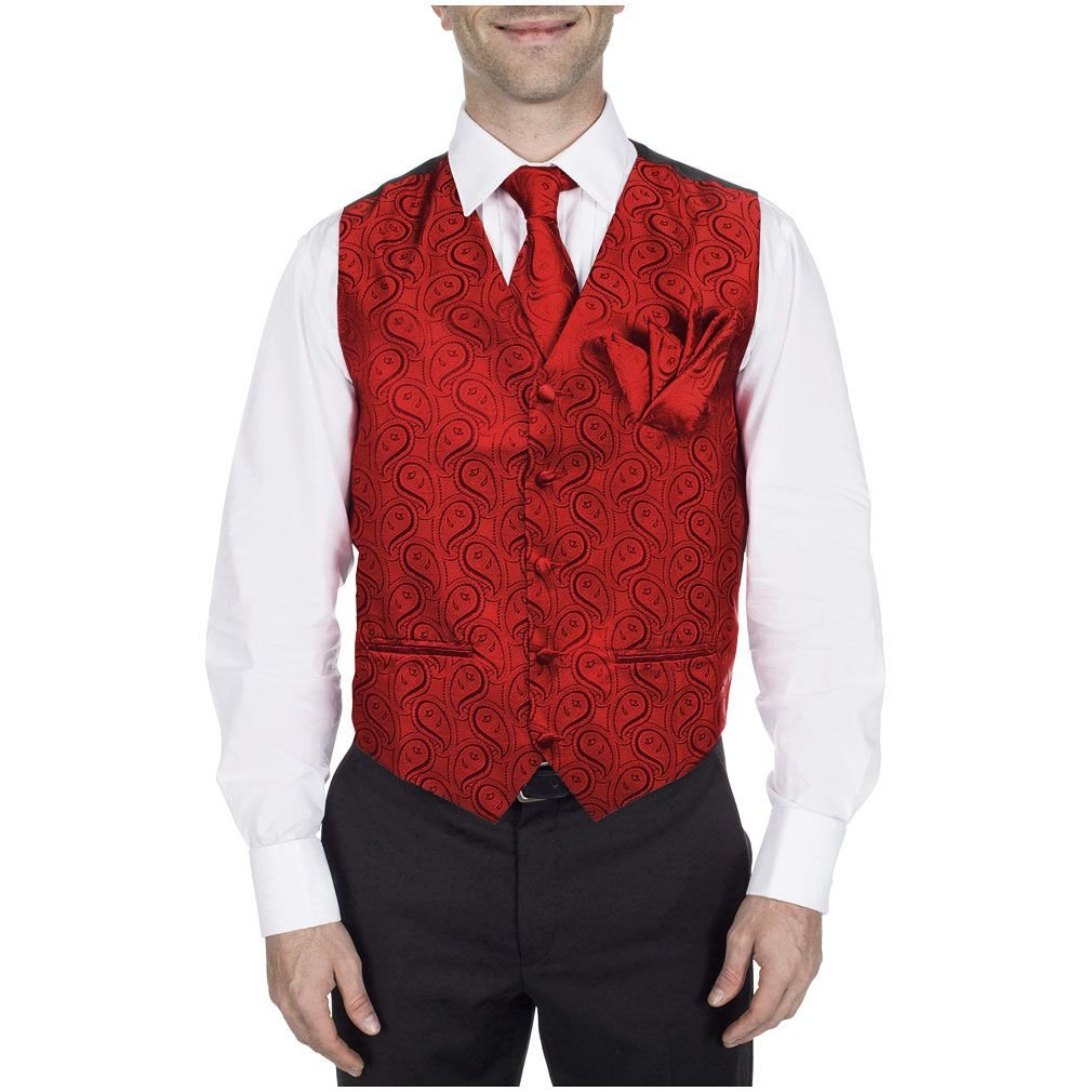 Buy Your Ties Men's Paisley Dress Vest Neck Tie For Tuxedo And Suit