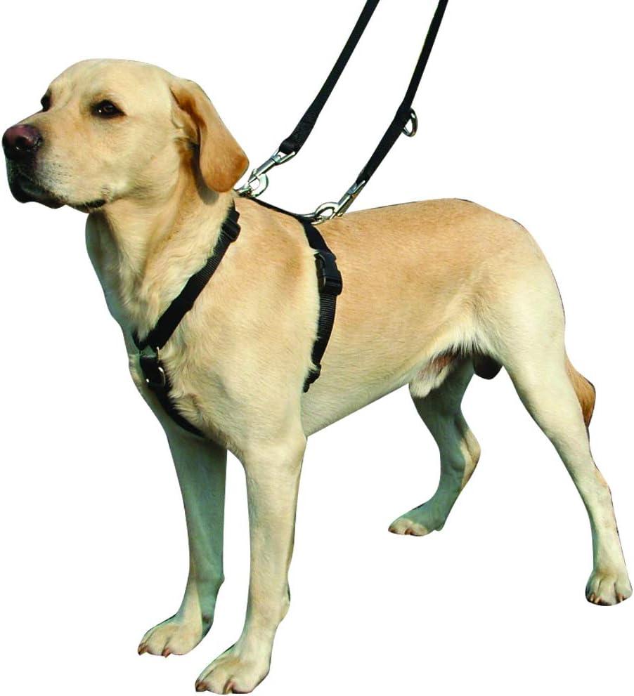 Kumfi Canine Kumfi - Arnés de Control Completo (Talla L): Amazon ...