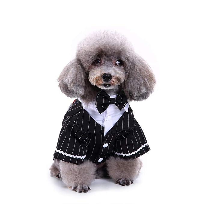 PET CLOTHES Mascotas Fiesta Traje Formal Traje Ropa Abrigo ...
