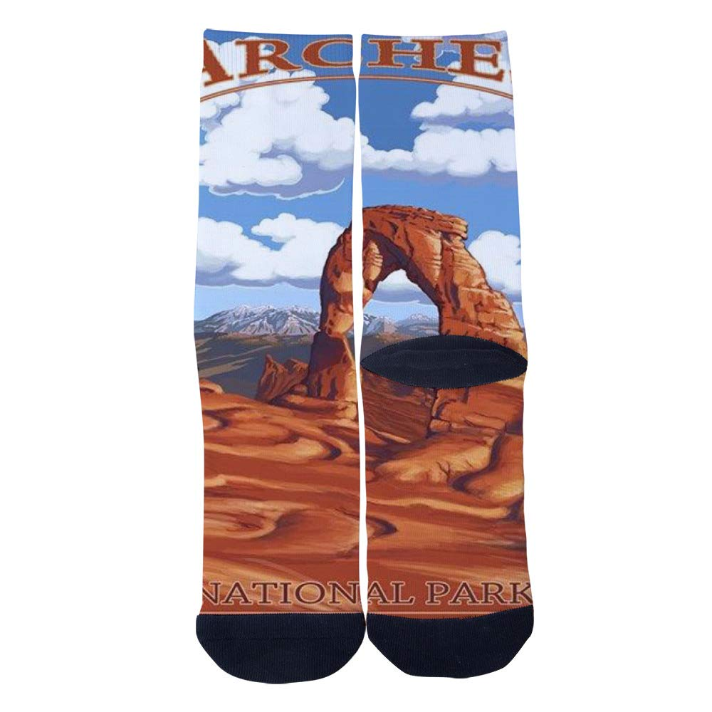 Mens Womens Casual Arches National Park Socks Crazy Custom Socks Creative Personality Crew Socks