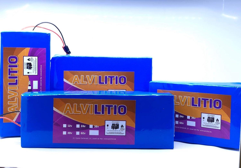 ALVILITIO Bateria de Litio Recargable 24V 9AH/12AH/15AH/18AH/21/AH/24AH/27AH/30AH Alta Potencia (24V 21AH)