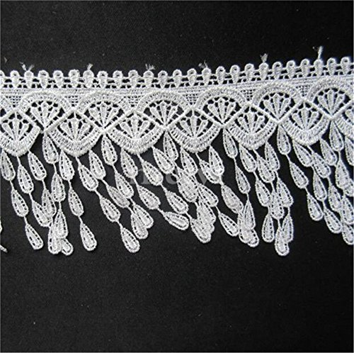 Dress Venice Lace - 5 Yards Tassel Fringe Lace Edge Trim Ribbon 9 cm Width Vintage Style White Edging Trimmings Fabric Embroidered Applique Sewing Craft Wedding Bridal Dress Embellishment DIY Decor Clothes Embroidery