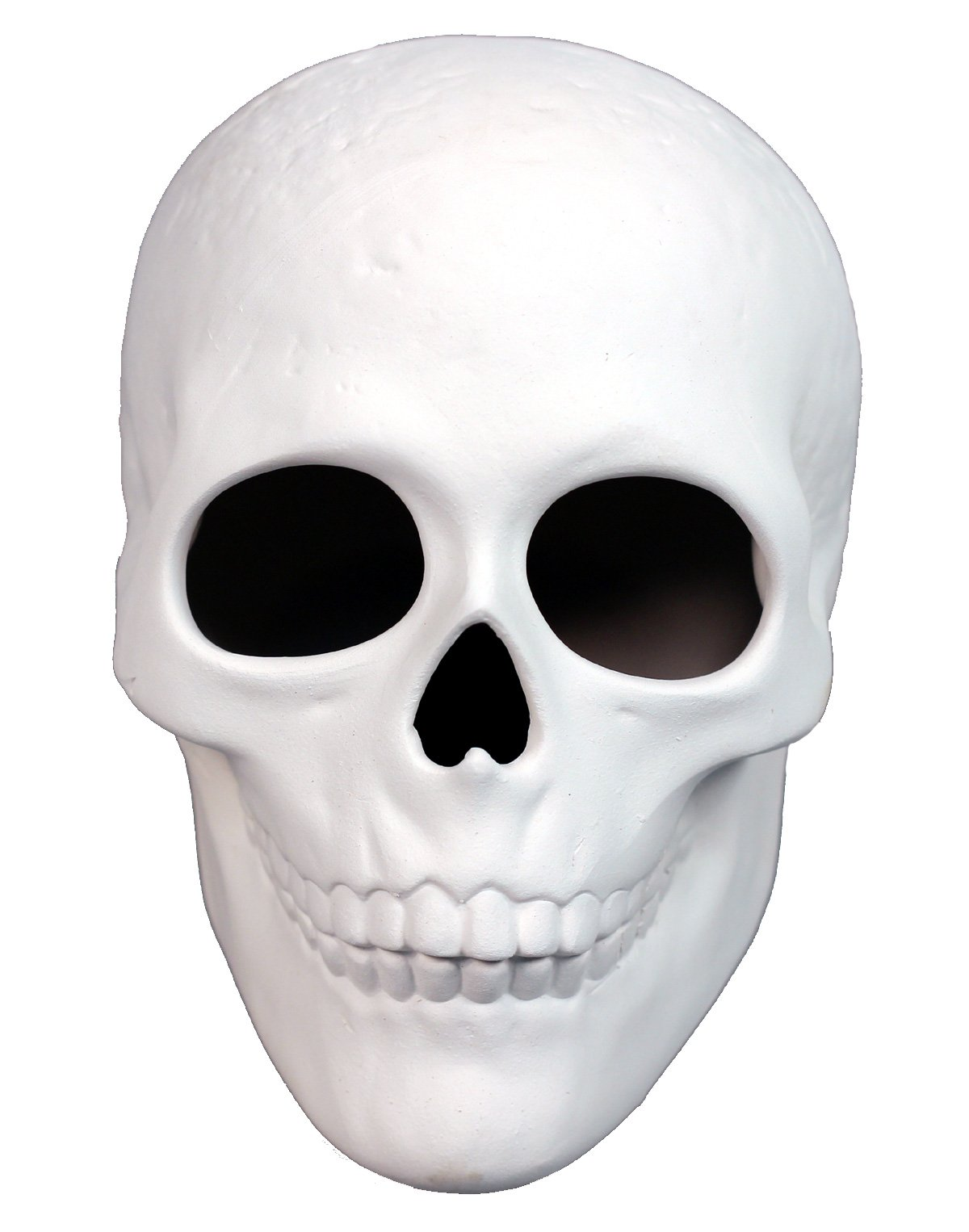 Ready To Paint Ceramic Bisque, 5 Inch Long x 4 Inch Tall Skull, Includes How To Paint Your Own Pottery Booklet