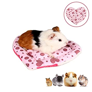 Zippi Guinea Pig Shelter with Play Tunnel Twin Pack ...