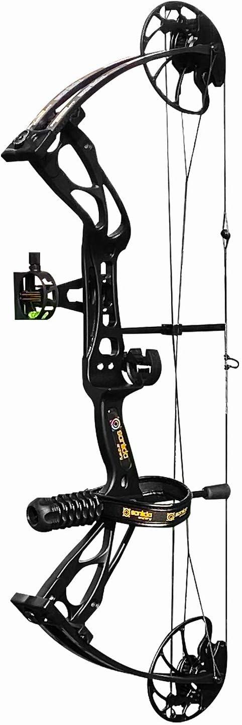 Dragon X8 Hunting Archery Compound Bow