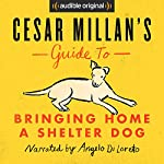 Cesar Millan's Guide to Bringing Home a Shelter Dog | Cesar Millan
