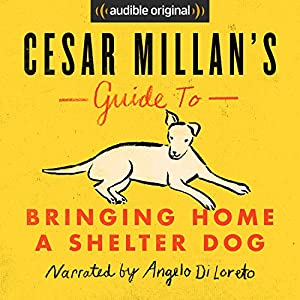 Cesar Millan's Guide to Bringing Home a Shelter Dog Audiobook