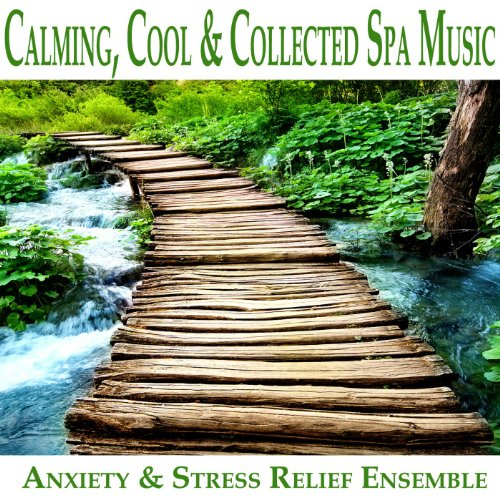 Calming Cool Collected Spa Music product image
