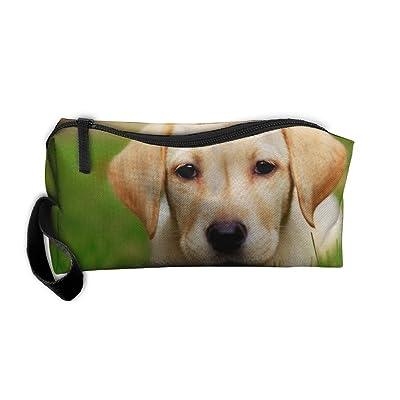 Jewelry Bag For Women Cosmetic Case Zipper Labrador Retriever On Grassland