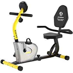 Pooboo Recumbent Exercise Bike Stationary for Seniors