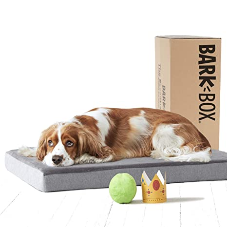Amazon.com: BarkBox - Cama ortopédica de espuma ...