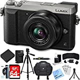 Beach Camera Panasonic LUMIX GX85 4K Mirrorless Interchangeable Lens Silver Camera w/12-32mm Lens Bundle includes Camera, Lens, 64GB SDXC Memory Card, Tripod, Case, Battery + Charger, Cloth and More