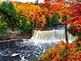 Tahquamenon Falls -Oil Painting On Canvas Modern Wall Art Pictures For Home Decoration Wooden Framed (20x16 Inch, Framed)