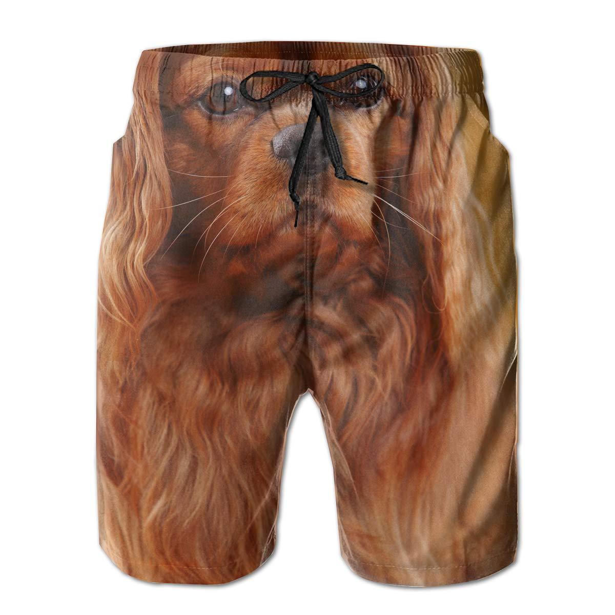 Golden Retriever Men/â/€s Beach Board Shorts Quick Dry Swim Truck Shorts
