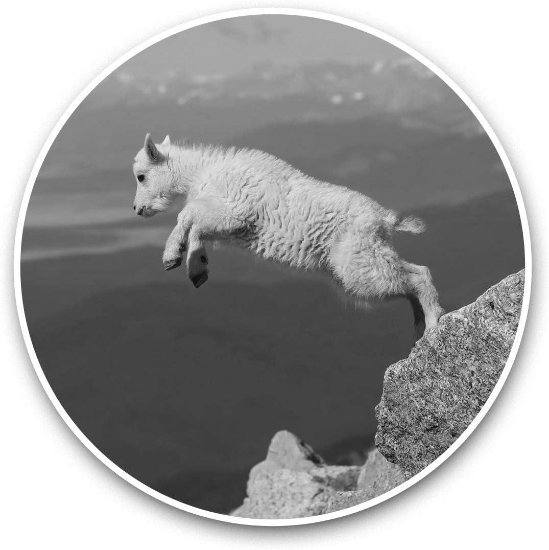 Vinyl Stickers (Set of 2) 15cm Black & White - Jumping Baby Goat Animal Laptop Luggage Tablet #36377