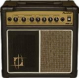 Randall NB15 Nuno Bettencourt Signature Series Amplifiers Combo