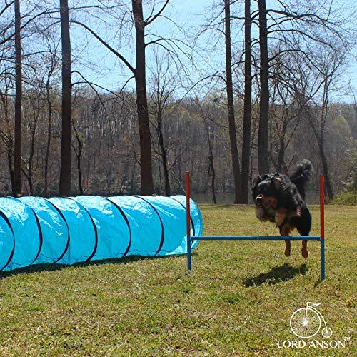 Lord Anson™ Dog Agility Set - Dog Agility Equipment - 1 Dog Tunnel, 6 Weave Poles, 1 Dog Agility Jump - Canine Agility Set for Dog Training, Obedience, Rehabilitation by Lord Anson (Image #4)