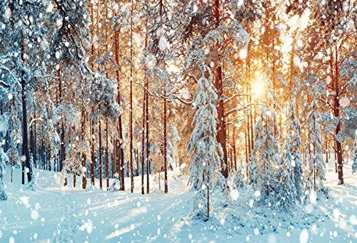 Baocicco 7x5フィート 雪の氷 フリース 松 森 サンシャイン Halos 背景 コットン ポリエステル 写真 背景 田舎風景 冬 景色 クリスマス 新年 祭 飾り布 ドリーミ 雪   B07FS5C216