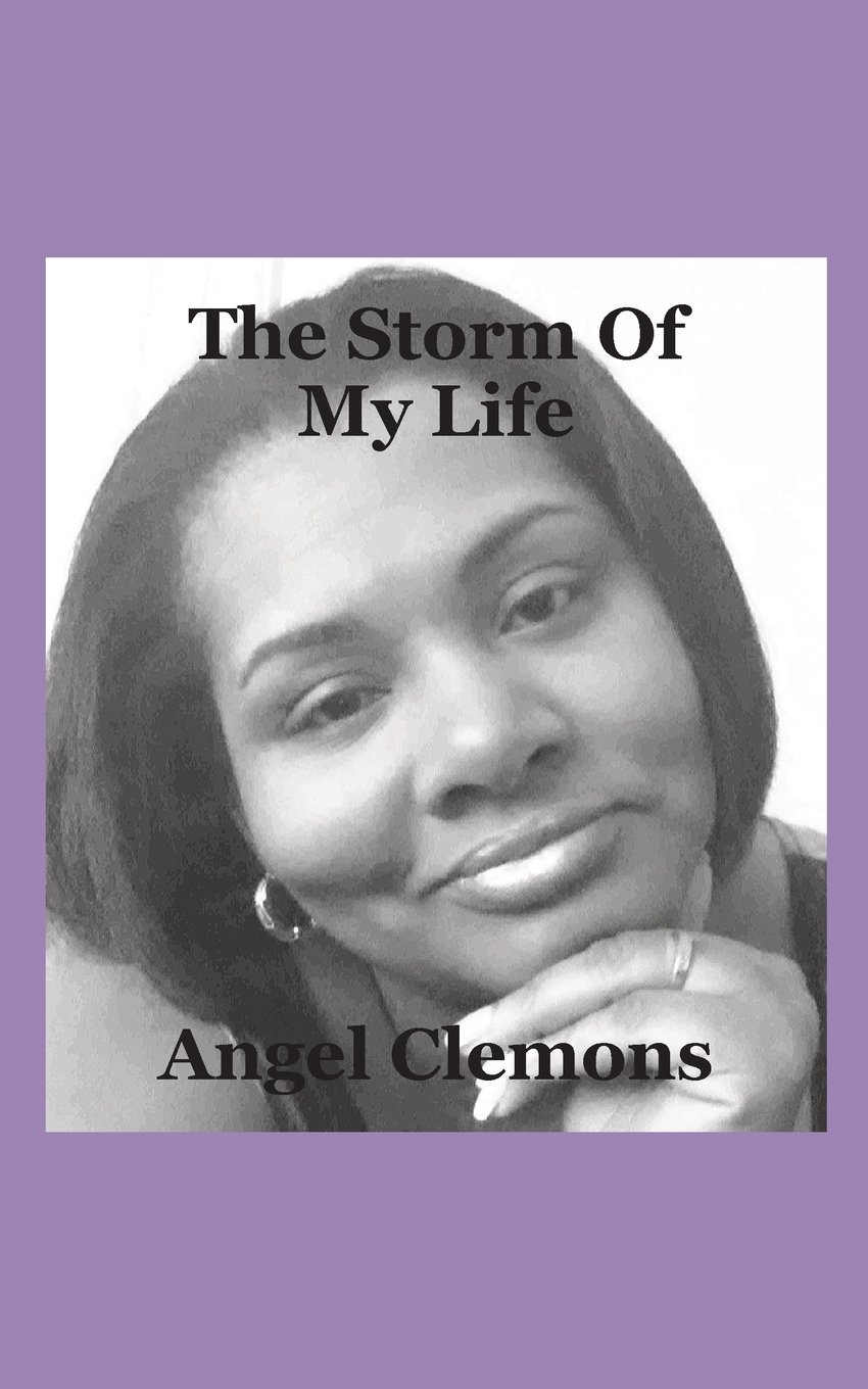 The Storm of My Life pdf