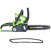 Greenworks 12-Inch 40V Cordless Chainsaw 20292 Deals