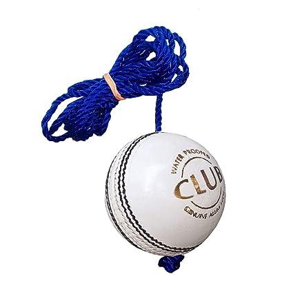 Amazon.com: WW Leather Club Practice - Pelota de críquet ...