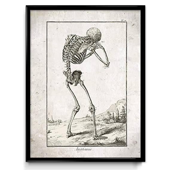 Amazon.com: Crying Skeleton Vintage Print - Skeleton Poster ...