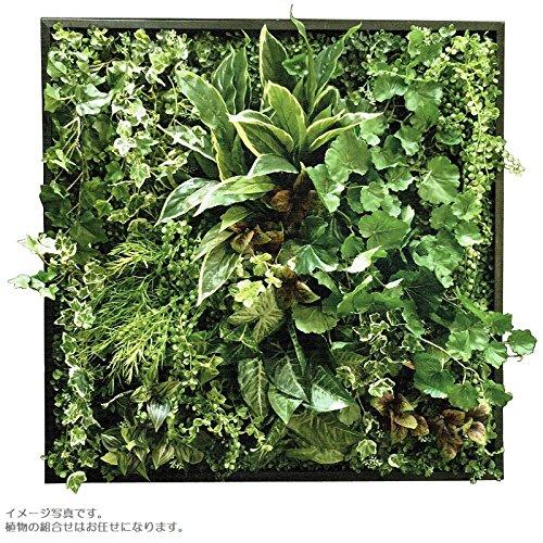 人工観葉植物 アーティフィシャルグリーンアレンジ 鉢付き □78cm rg-013 B074FVS486