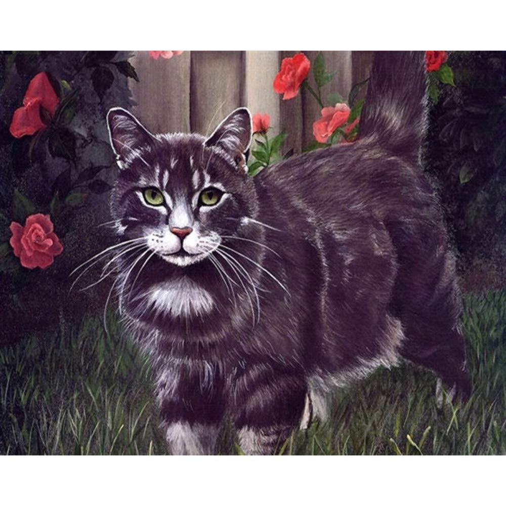 Cártamo Gato Negro Animal DIY Pintura Digital por Números Arte de la Pared Moderna Pintura de la Lona Decoración para El Hogar 40X50 CM