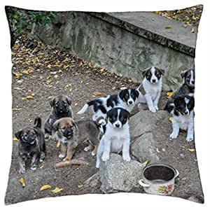Cute Puppies - Throw Pillow Cover Case (18