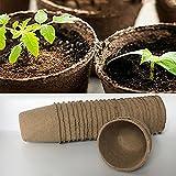 240pcs Eco Friendly & Biodegradable Peat Pots Seedling Nursery Trays Plant -for Plant Starters,Seedlings,Saplings,Flowers,Vegetables,Garden,Backyard,Kitchen Seed Planting Grower