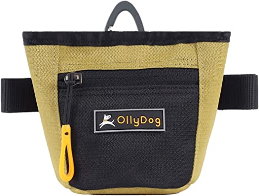 OllyDog Goodie Treat Bag, Waist Belt Clip for Hands-Free Training, Lightweight Easy to Wear Pouch, Magnetic Opening, Comfortable for Everyday Use, Three Ways to Wear