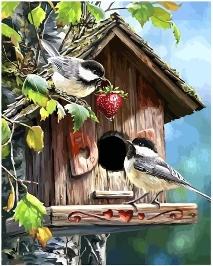 20 inch Christmas Decor Decorations Gifts Without Frame ZXYLAL Diy Oil Paint by Number Kit Bird House Painting Paintworks 16