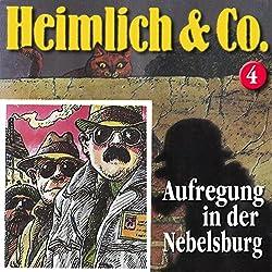 Aufregung in der Nebelsburg (Heimlich & Co. 4)