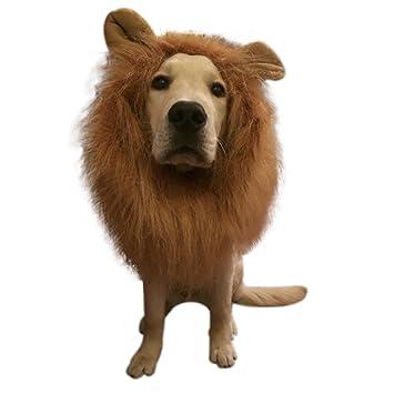 Halloween debe peluca del león Fancy Hair Dogs Lion Mane peluca con orejas para perros de