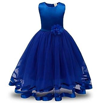 Longra Mädchen Kleid Festlich Brautjungfern Kleid Hochzeit Partykleid mit Spitze Tüll Festzug Kinderkleidung Kinder Kleid Pri