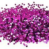 Purple Craft Glitter 100g Bag