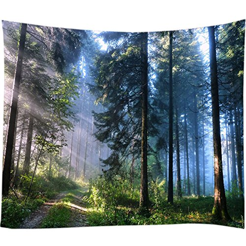 Nature and the Forest's Ultimate Landscape Enjoy this Visual Feast Home Decoration Tapestry (Green, 78Wx59L) (Landscape Tapestry)