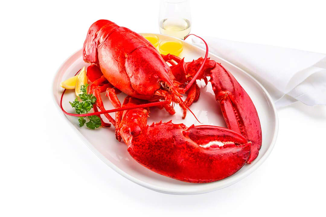 Live New England Lobster, 4-6 lb avg, 10 lb case, approximately 2 ...