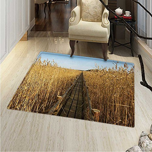 (Nature Area Rug Old Narrow Floating Walkway in The Lake Surrounded Reeds Greenland Nature Theme Indoor/Outdoor Area Rug 2'x3' Yellow Brown)