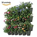 Worth Garden SELF Watering Vertical Wall Hangers with Pots - Wall Plant Hangers - Outdoor Self Watering Planter Set
