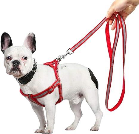 7°MR arneses para Perros Conjuntos, Conjuntos, Arnés para Perros ...