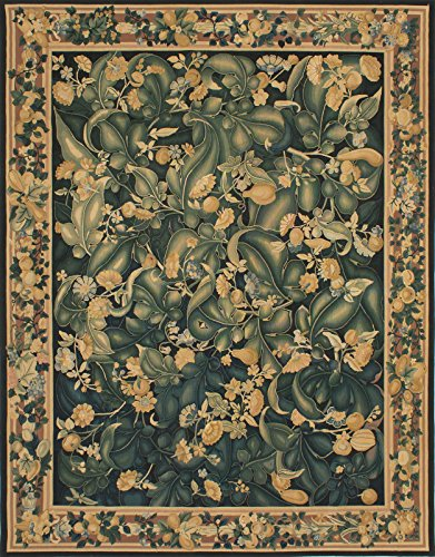 6'0'' X 9'0'' French Tapestry Traditional Black, Green Area by CarPet