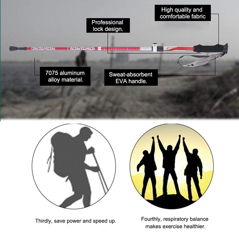 Teleskop luckything Nordic Walking St/öcke Leicht Verstellbar Mit Gummipuffer F/ür Damen Und Herren Faltbar Wanderst/öcke 7075 Aluminium Wanderstock