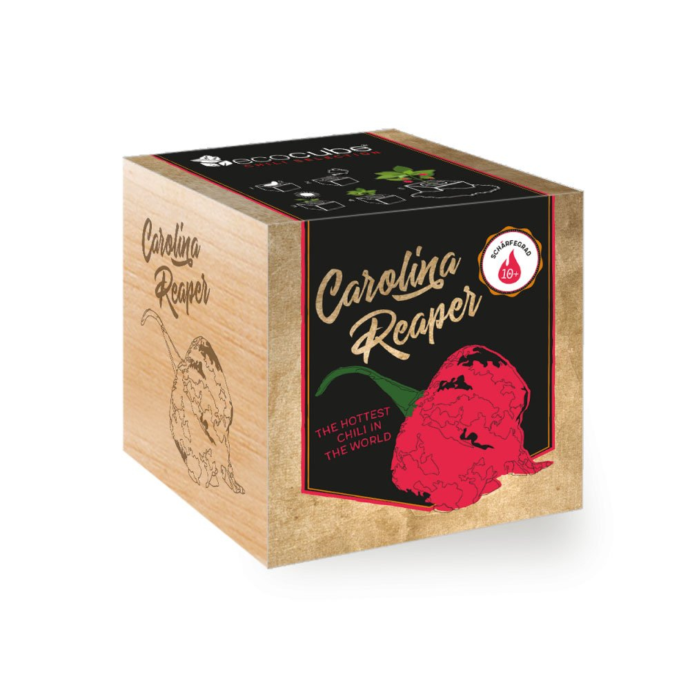 Chilipflanze 'Carolina Reaper' im Holzwürfel - Chili Selection Ecocube