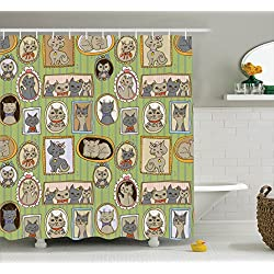 Cat Shower Curtain Framed Pictures Of Cute Cats On The Wall Decorating Lovely Memories Moments