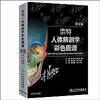 人卫版 奈特人体解剖学彩色图谱 第6版 张卫光MDPhD 翻译版双语全彩图人体解剖图谱奈特人体解剖生理学人体解剖学书籍