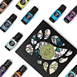 12 Synergy Blend Set by Edens Garden 100% Certified Pure Therapeutic Grade GC/MS Tested